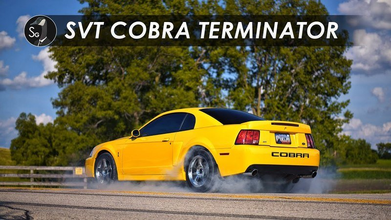 This 2003-2004 SVT Cobra Terminator Is the Car You Probably Forgot About