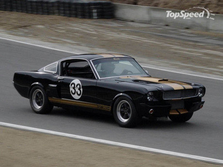 ford mustang shelby. shelby mustang gt 350 picture