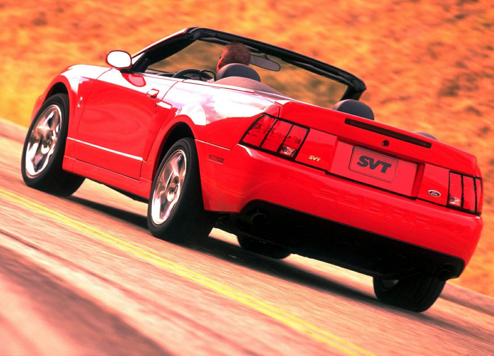 2003 ford mustang cobra review gallery top speed. Black Bedroom Furniture Sets. Home Design Ideas
