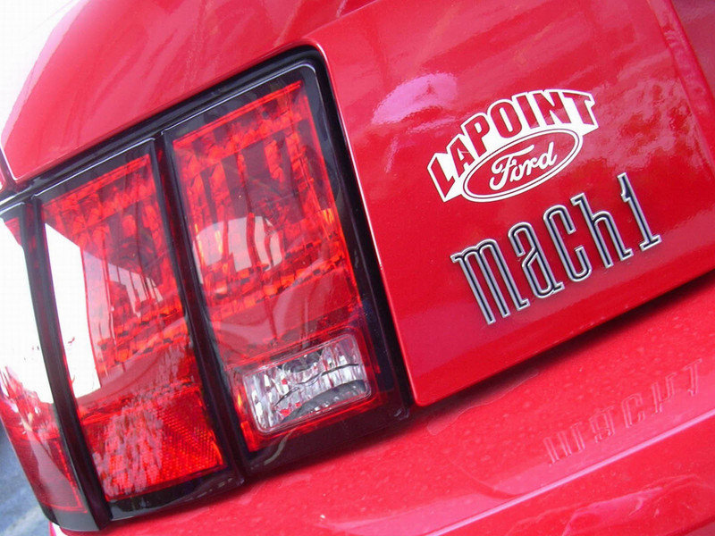 2003 Ford Mustang Mach 1 - image 5402