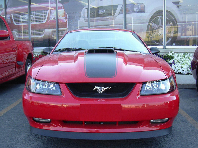 2003 Ford Mustang Mach 1 - image 5397