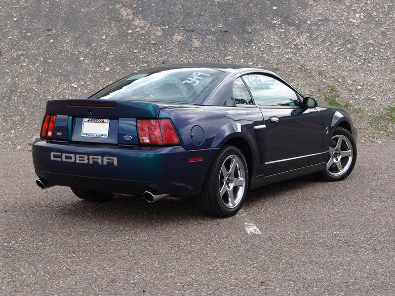 2004 ford mustang cobra review. Black Bedroom Furniture Sets. Home Design Ideas