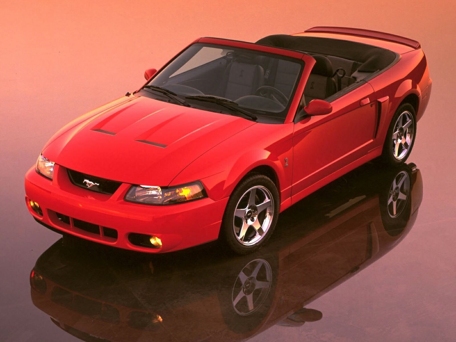 2003 2004 ford svt mustang cobra picture 27759 car review top speed. Black Bedroom Furniture Sets. Home Design Ideas