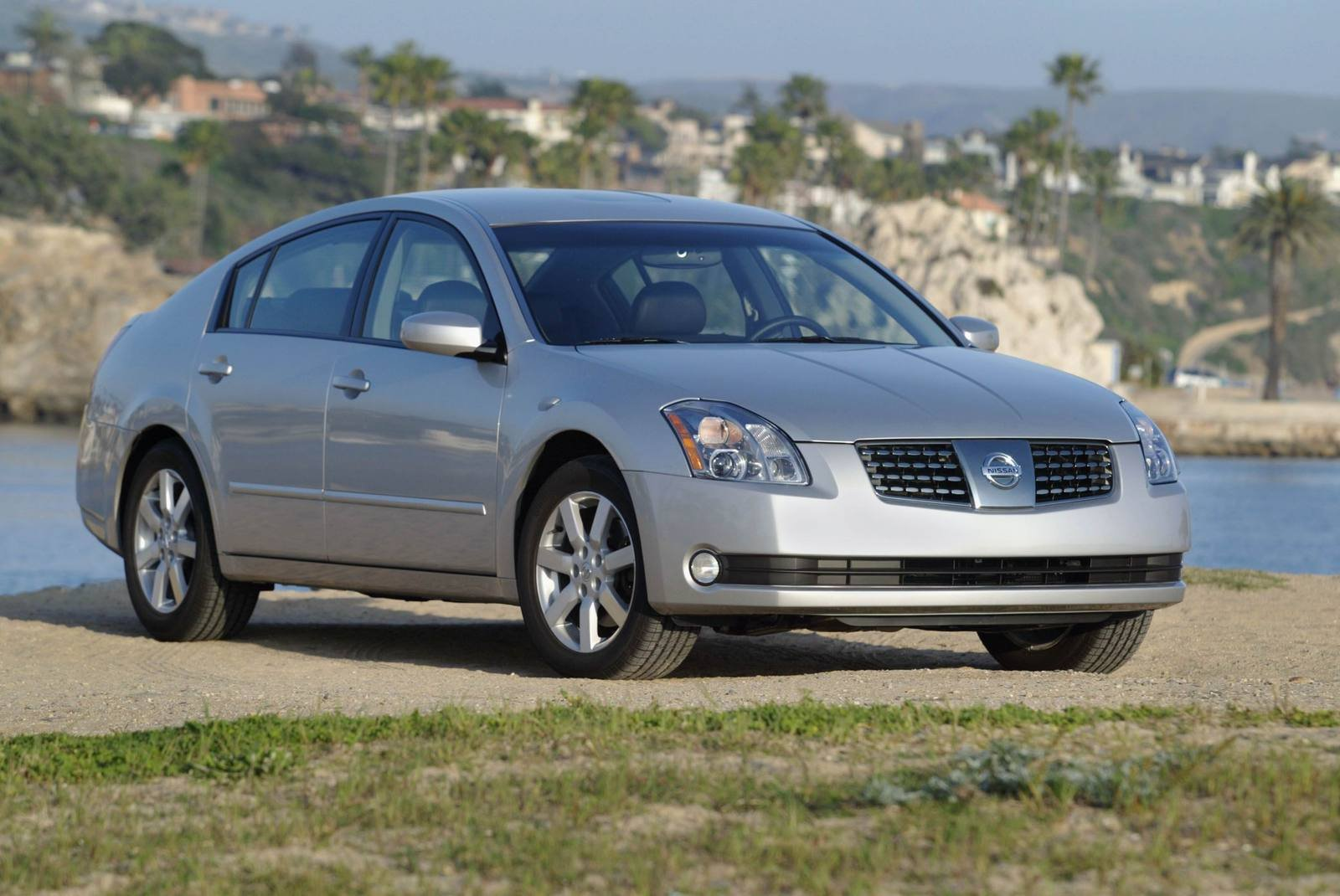 2006 nissan maxima se picture 41248 car review top speed. Black Bedroom Furniture Sets. Home Design Ideas