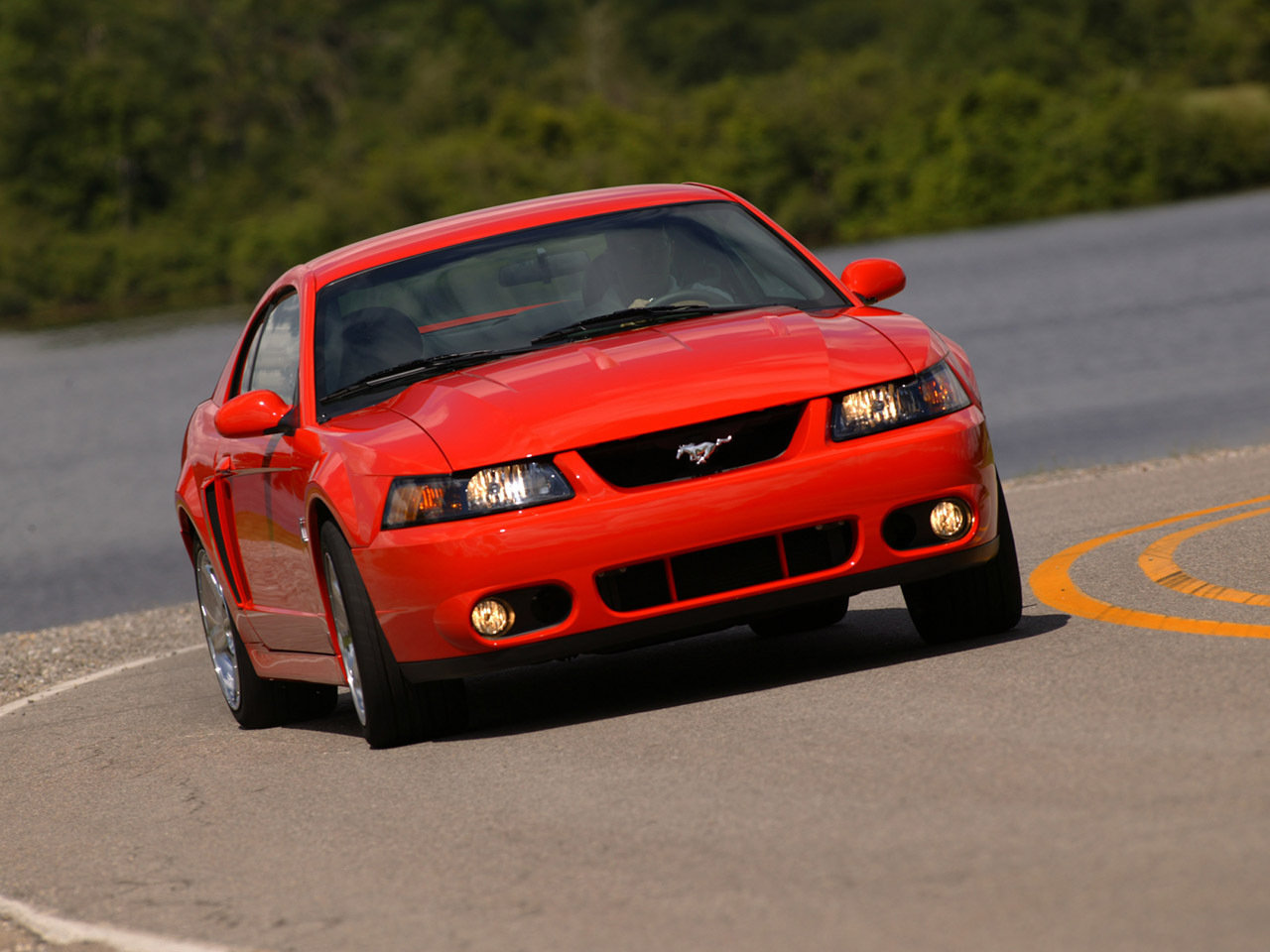 2003 2004 ford svt mustang cobra picture 51249 car review top speed. Black Bedroom Furniture Sets. Home Design Ideas