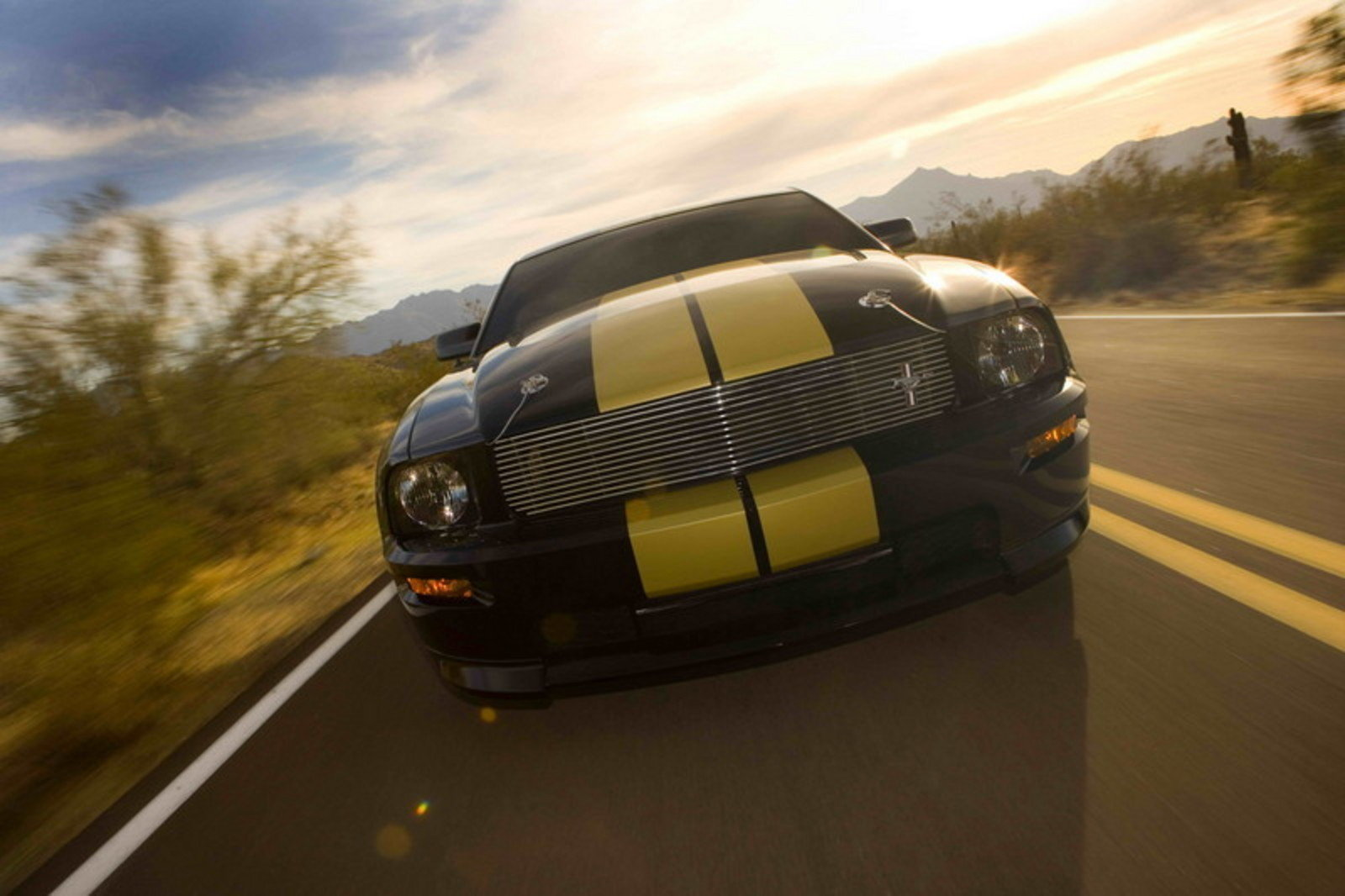 2006 ford mustang shelby gt h review top speed. Black Bedroom Furniture Sets. Home Design Ideas