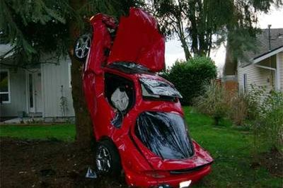 Lesson one: how to park your car in a tree