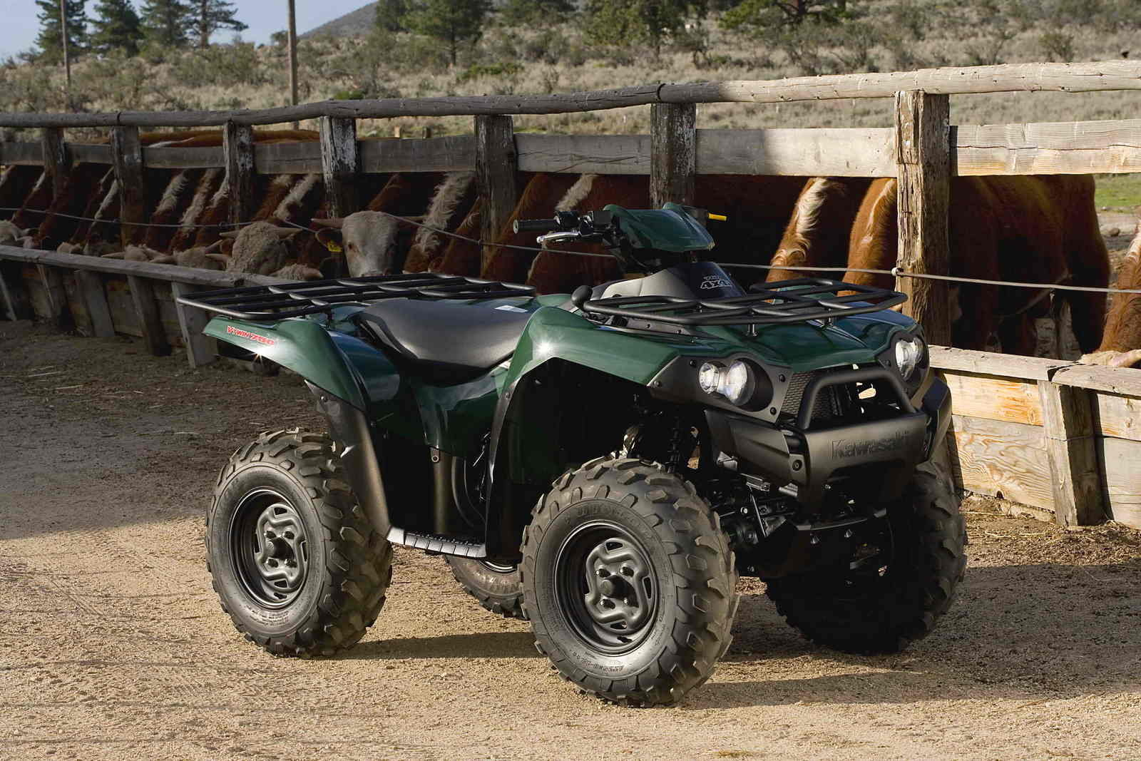 2007 kawasaki brute force 750 4x4i picture 158869 motorcycle review top speed. Black Bedroom Furniture Sets. Home Design Ideas