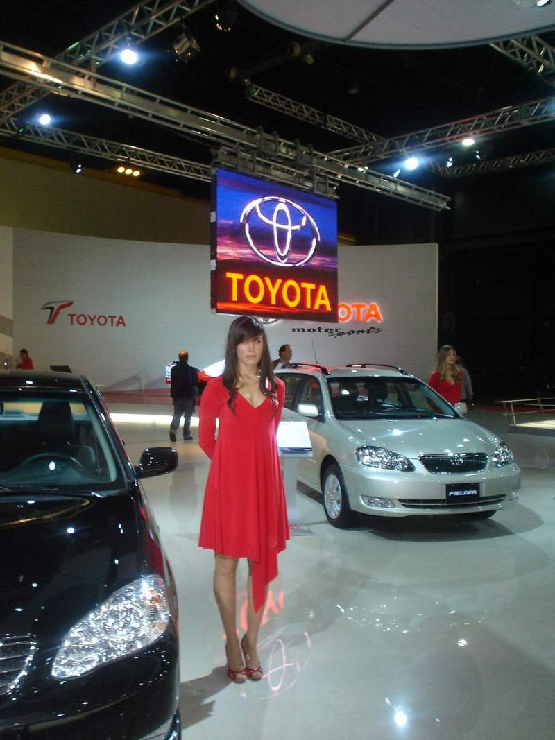 Buenos Aires Auto Show - The Girls