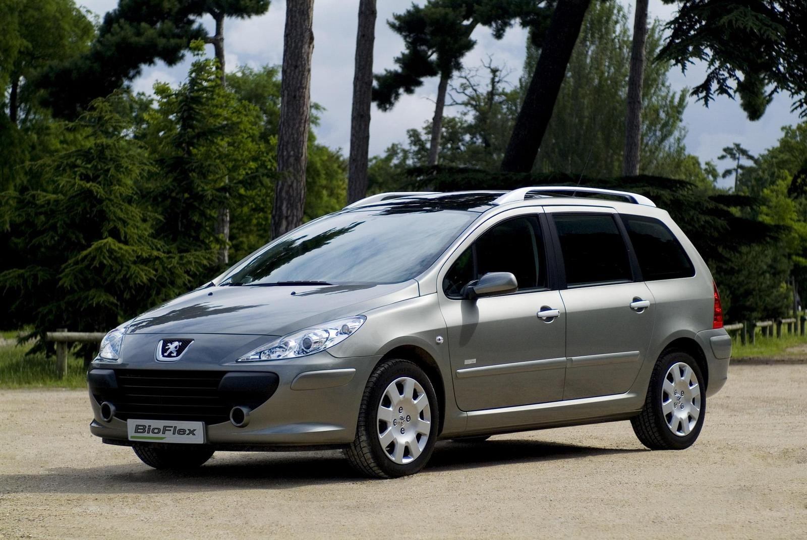 2007 peugeot 307 sw bioflex picture 190209 car review. Black Bedroom Furniture Sets. Home Design Ideas