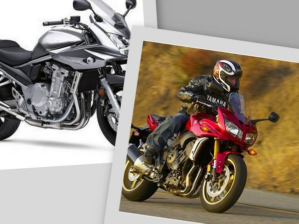 Contents contributed and discussions participated by carolyn jones yamaha fz1 service manual 2008 fandeluxe Choice Image