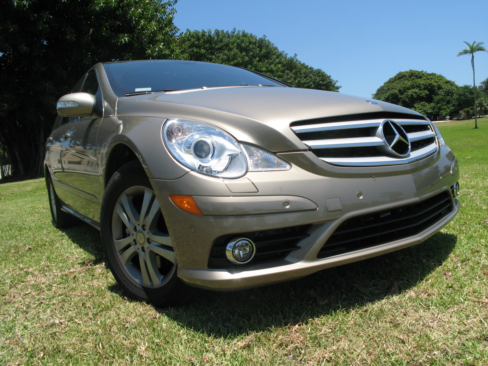 2008 mercedes r320 cdi 4 matic picture 248570 car review top speed. Black Bedroom Furniture Sets. Home Design Ideas