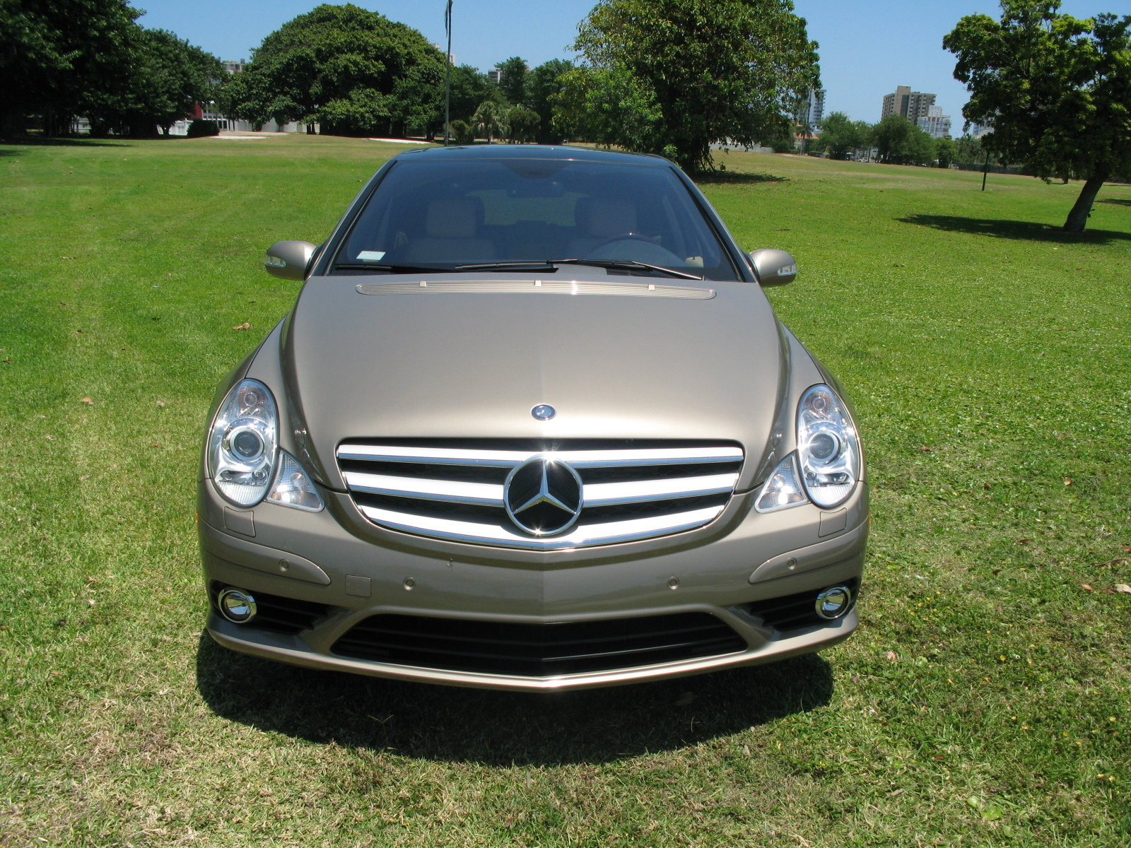 2008 mercedes r320 cdi 4 matic picture 248579 car review top speed. Black Bedroom Furniture Sets. Home Design Ideas