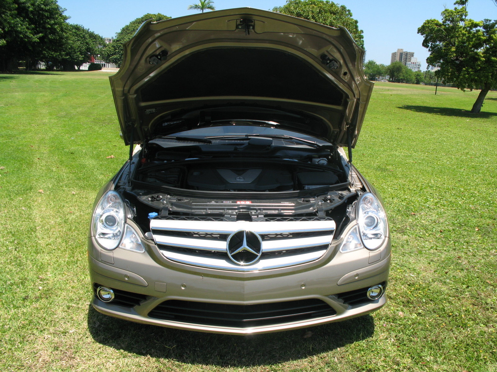2008 mercedes r320 cdi 4 matic picture 248594 car. Black Bedroom Furniture Sets. Home Design Ideas