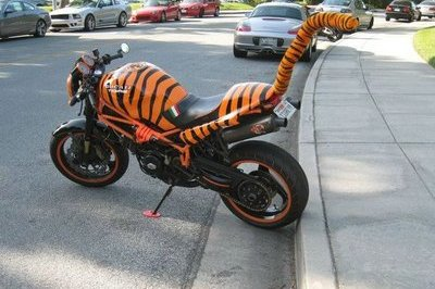 Ducati Monster transforms into angry cattish