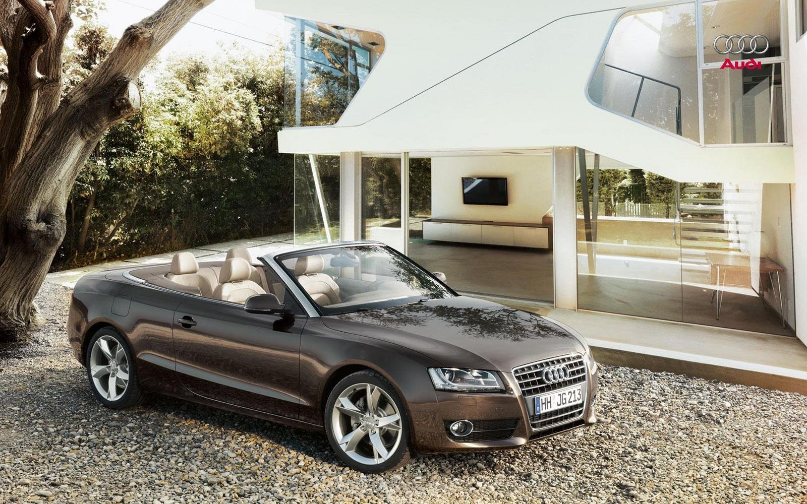 2009 audi a5 s5 convertible picture 276442 car review. Black Bedroom Furniture Sets. Home Design Ideas
