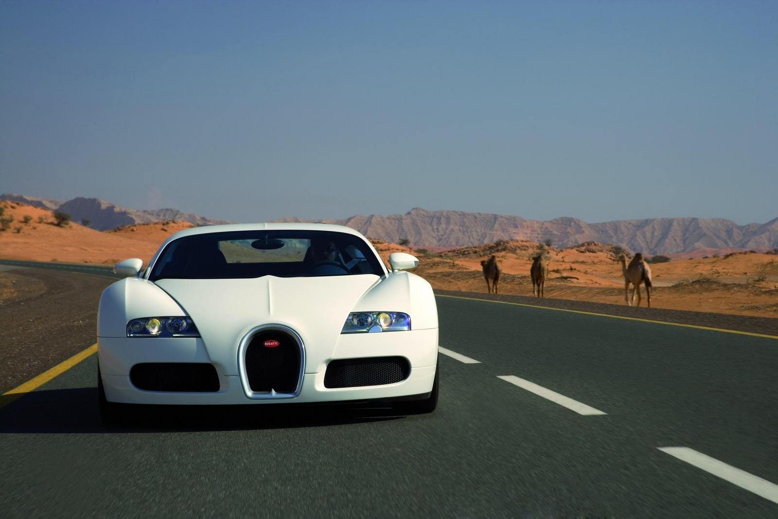 2006 bugatti veyron 16 4 picture 287568 car review top speed. Cars Review. Best American Auto & Cars Review