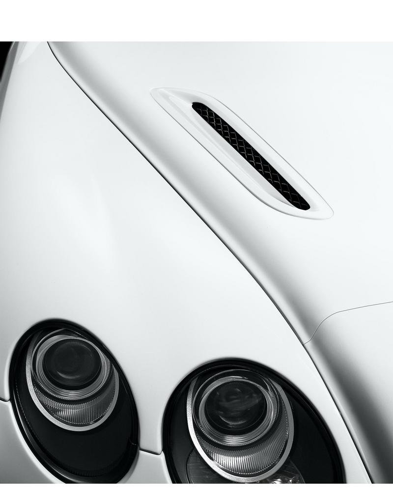 2010 Bentley Continental Supersports picture - doc287648
