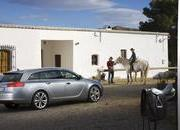 2009 Opel Insignia Sports Tourer - image 291041