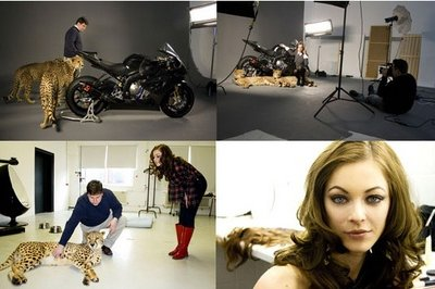 2009 BMW S 1000 RR Photo Session with Gorgeous Model and Cheetah