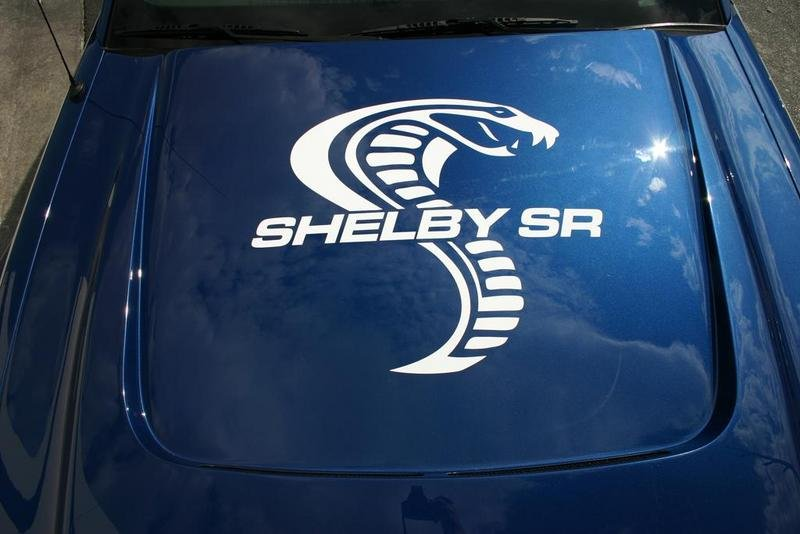 Shelby SR performance package for the Ford Mustang - image 307336