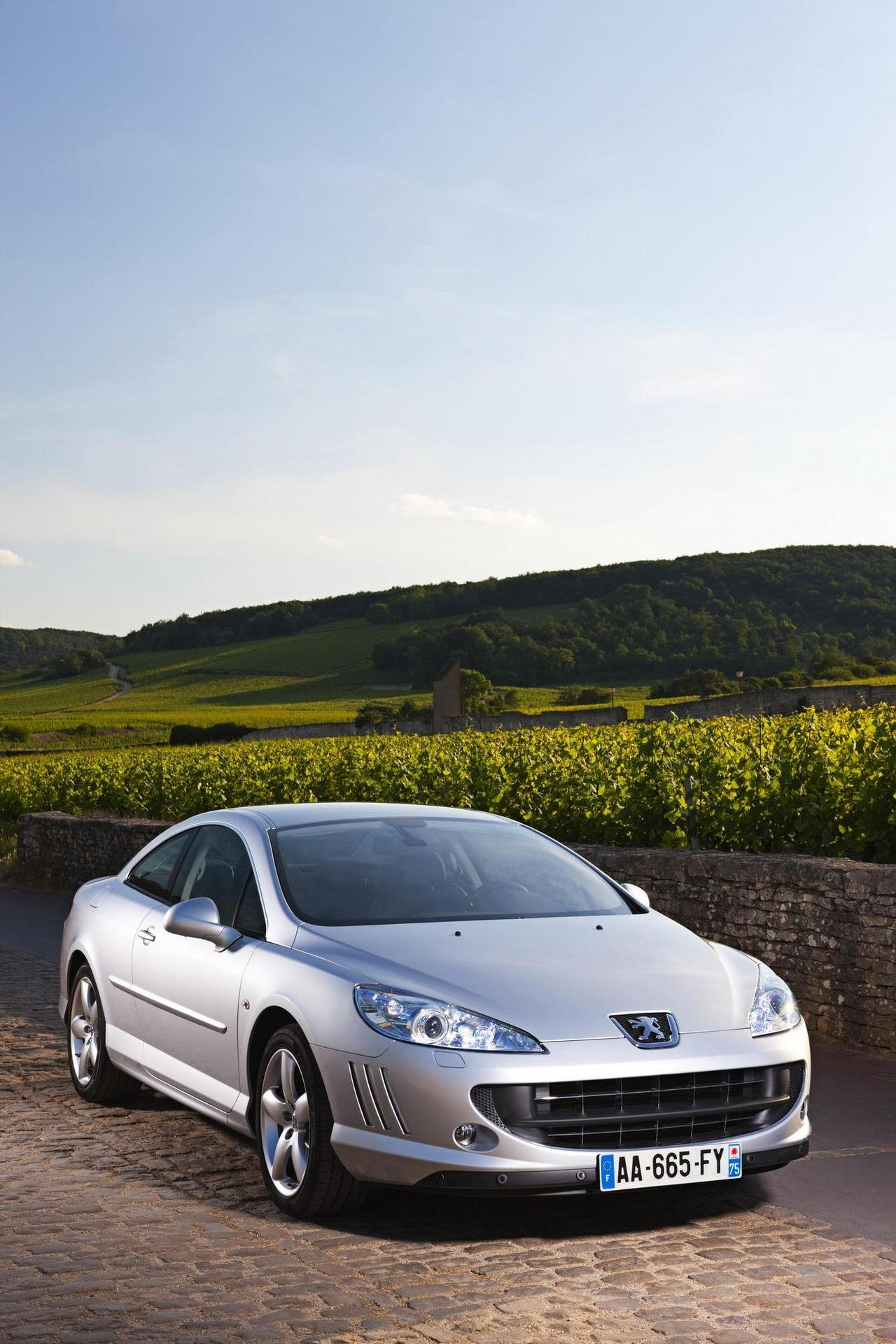 2009 peugeot 407 coupe picture 310114 car review top speed. Black Bedroom Furniture Sets. Home Design Ideas