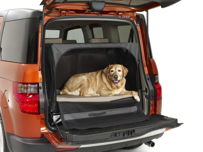 2010 Honda Element Dog Friendly