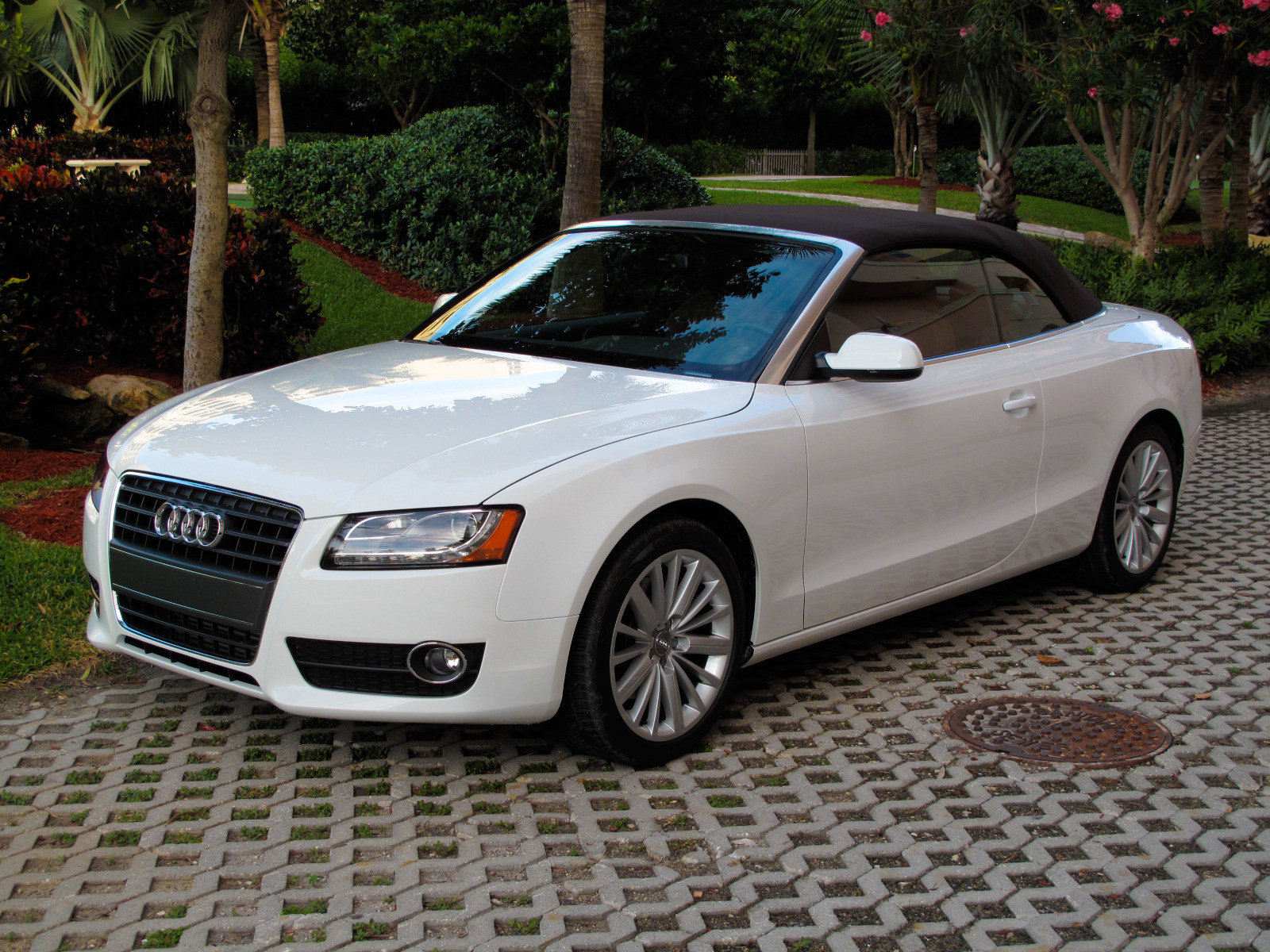 2010 audi a5 cabriolet picture 347459 car review top speed. Black Bedroom Furniture Sets. Home Design Ideas