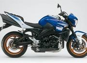 First look: 2010 Suzuki B-King gets attractive new color scheme - image 349732