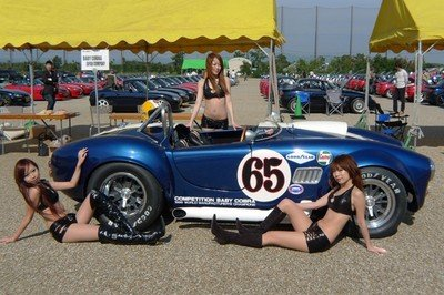 Baby Cobra is a nice alternative for Shelby-loving enthusiasts