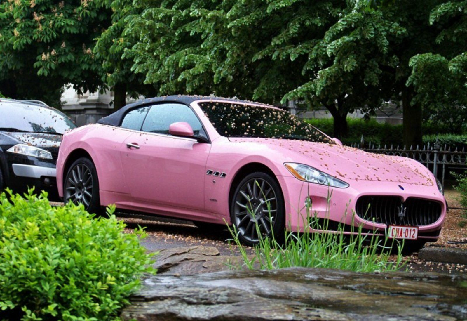 How About A Pink Maserati GranCabrio? News