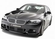 2011 BMW 5-Series M-Sport package by Hamann - image 391621