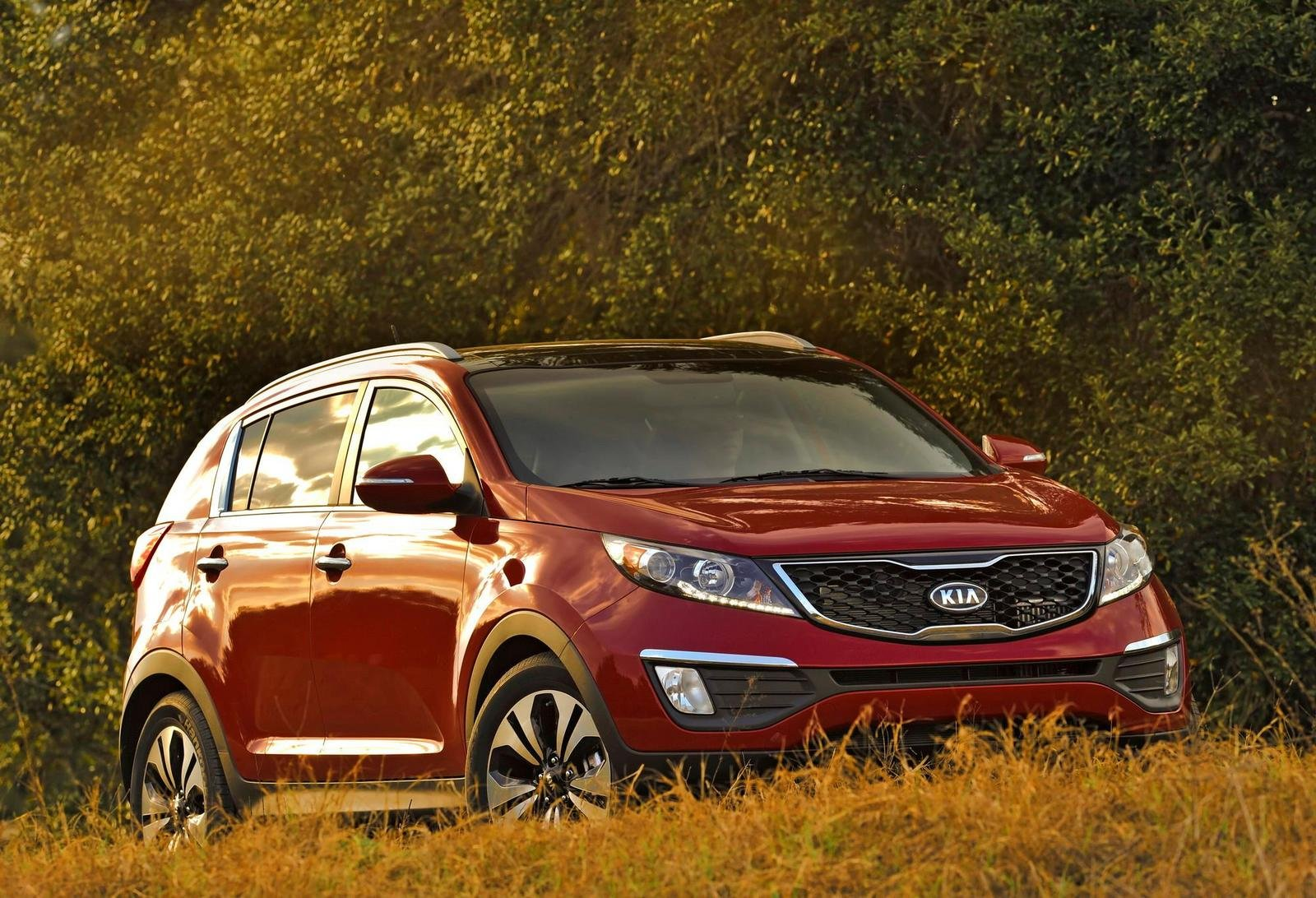 2011 kia sportage sx turbo picture 395153 car review top speed. Black Bedroom Furniture Sets. Home Design Ideas