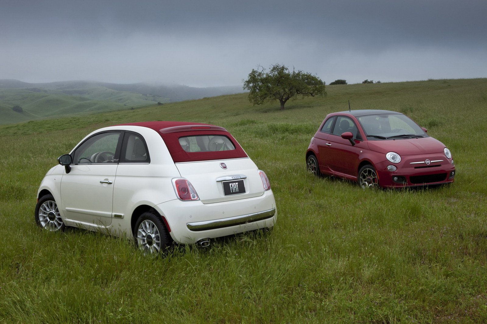 2012 fiat 500 cabrio picture 400217 car review top speed. Black Bedroom Furniture Sets. Home Design Ideas