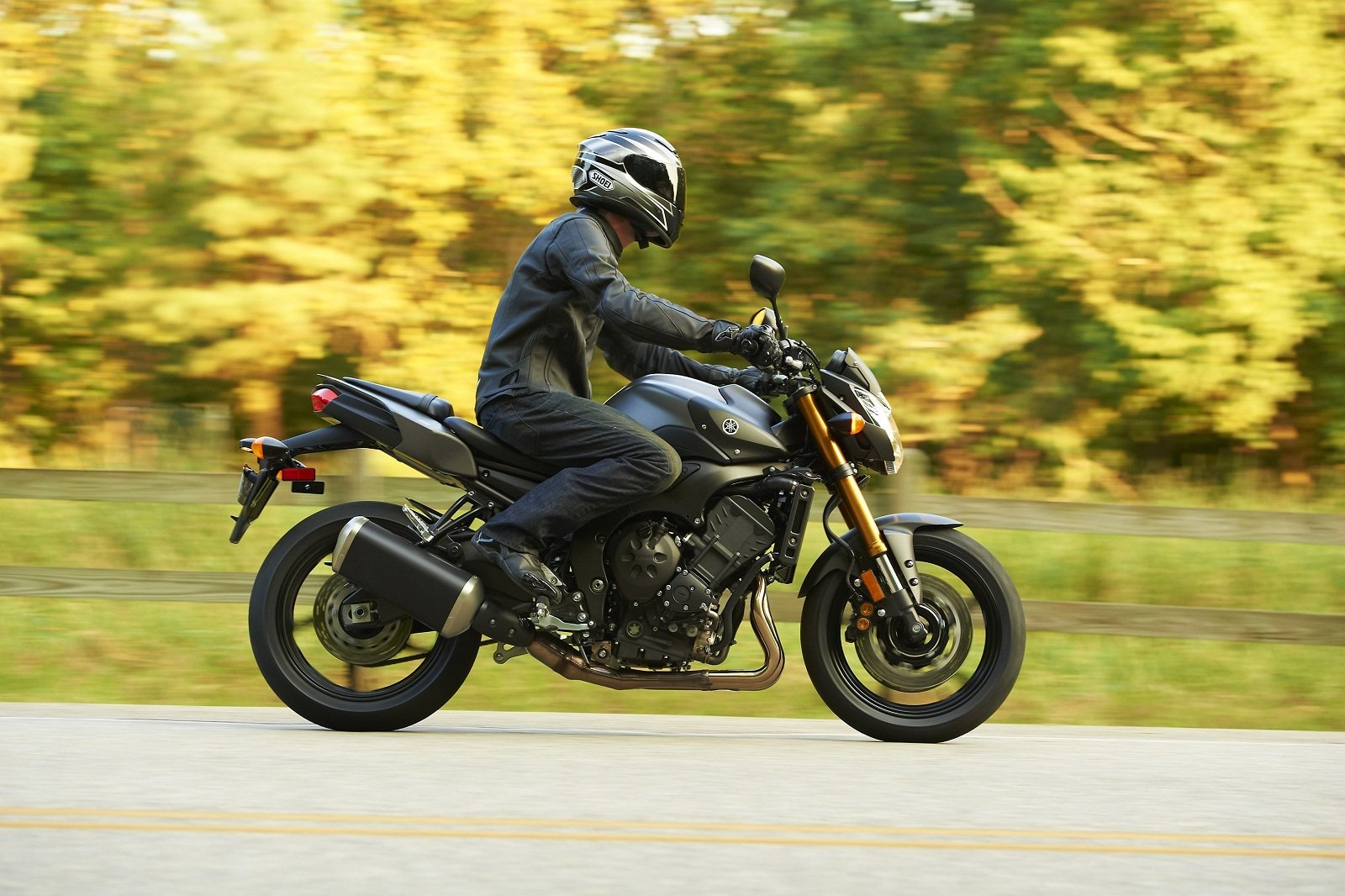 2012 yamaha fz8 picture 418949 motorcycle review top speed. Black Bedroom Furniture Sets. Home Design Ideas