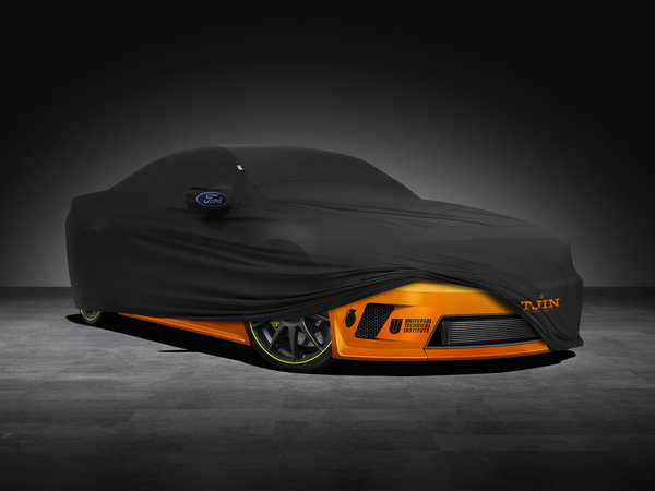 Ford Mustang GT 5.0 Tjin Edition