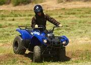 2012 Yamaha Grizzly 125 Automatic - image 422185