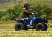 2012 Yamaha Grizzly 125 Automatic - image 422186