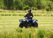 2012 Yamaha Grizzly 125 Automatic - image 422187