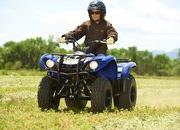2012 Yamaha Grizzly 125 Automatic - image 422188