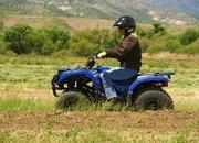 2012 Yamaha Grizzly 125 Automatic - image 422189