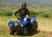 2012 Yamaha Grizzly 125 Automatic - image 422191