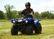 2012 Yamaha Grizzly 125 Automatic - image 422194