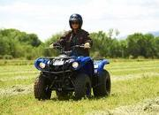 2012 Yamaha Grizzly 125 Automatic - image 422195