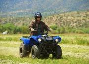 2012 Yamaha Grizzly 125 Automatic - image 422198