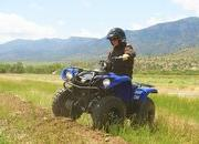 2012 Yamaha Grizzly 125 Automatic - image 422199