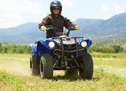 2012 Yamaha Grizzly 125 Automatic - image 422201