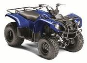 2012 Yamaha Grizzly 125 Automatic - image 422176