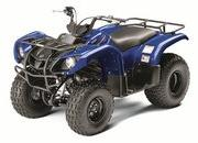 2012 Yamaha Grizzly 125 Automatic - image 422177