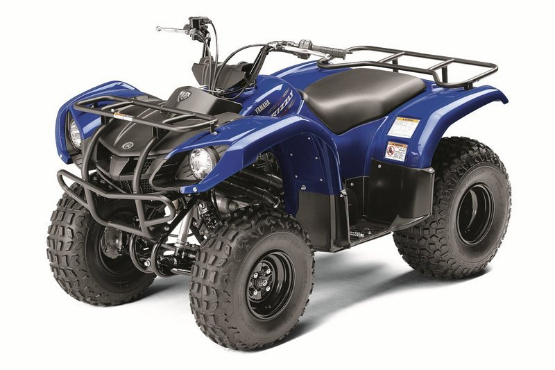 2012 Yamaha Grizzly 125 Automatic High Resolution Exterior - image 422177